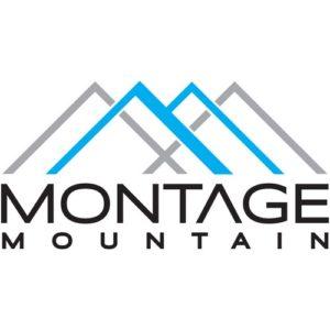montage-logo-big-white